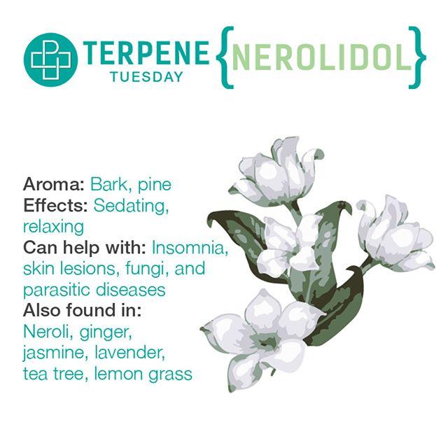 Νερολιδόλη - Nerolidol
