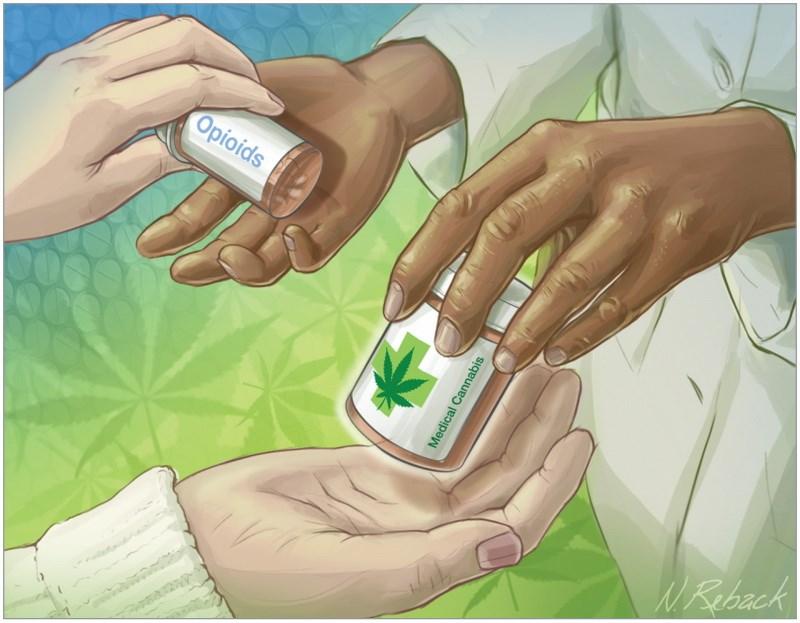 Ιατρική χρήση της κάνναβης για την εξάρτηση από οπιοειδή