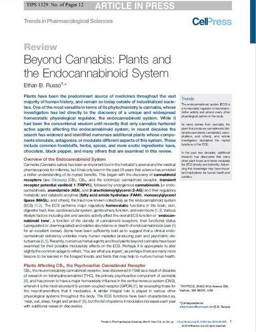 Κάνναβη: μια πύλη για την ιατρική με βότανα