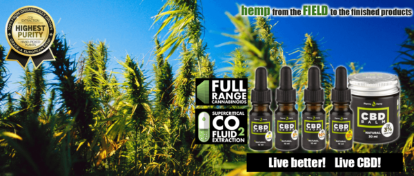 PharmaHemp 24% CBD Premium Black Drops 10 ml