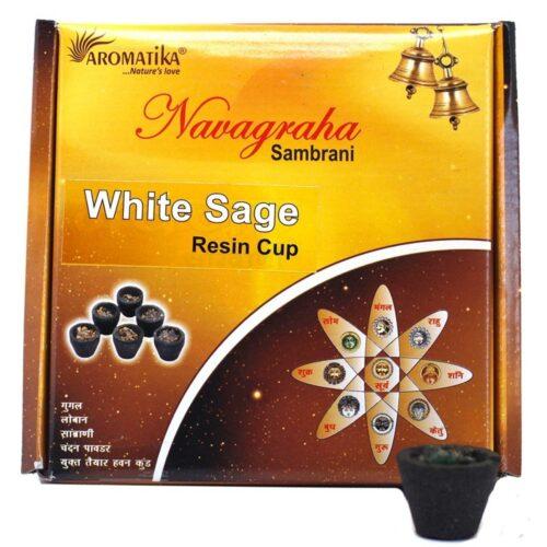 Ρητίνη Θυμιάματος Aromatika White Sage - Λευκό Φασκόμηλο