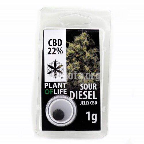 Sour Diesel Jelly CBD 22% - Plant Of Life