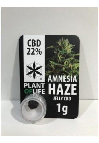 Amnesia Haze Jelly CBD 22% - Plant Of Life