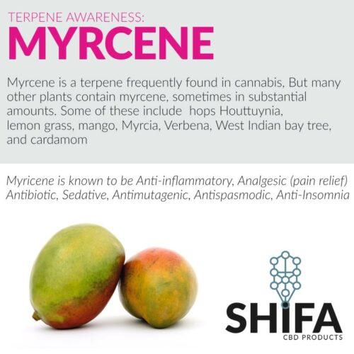 Μυρσένιο - Myrcene